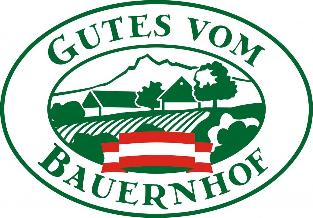 Logo Gutes_Fahne